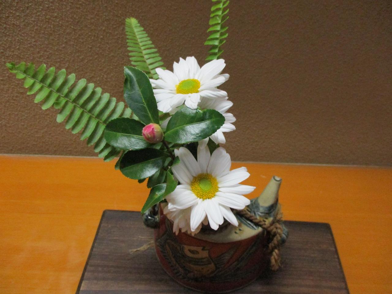 花の種類⇒ キク ツバキの実